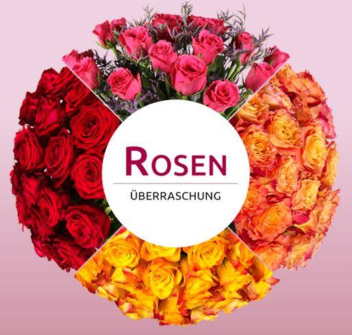 miflora-rosenueberraschung